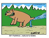 Nature'sBidet
